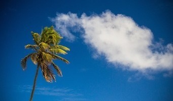 Barbados Weather in January