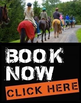 Barbados Horseback Tours